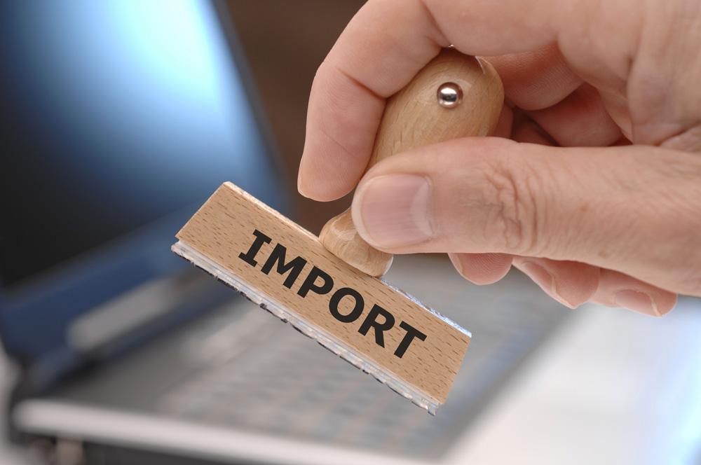 modello intrastat: import - export